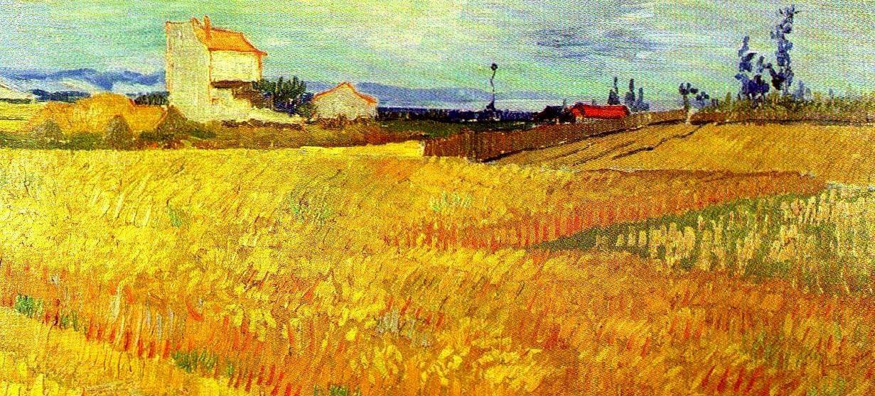 campo de trigo 1888