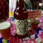 A ~mágica~ do trabalho e da união: Tudo sobre a I Feira de Cerveja Artesanal de Ubatuba